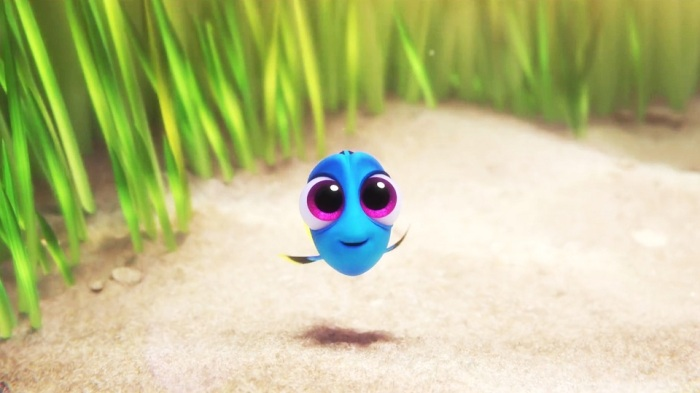 baby-dory-wallpaper-02603