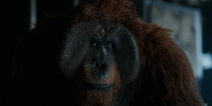 war-for-the-planet-of-the-apes-trailer-images-28